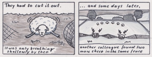 sheepcomic01_small_02